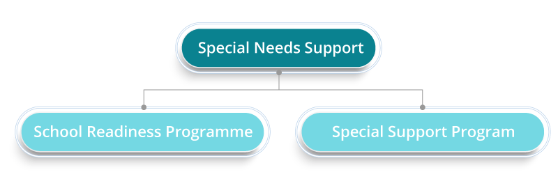 special needs support